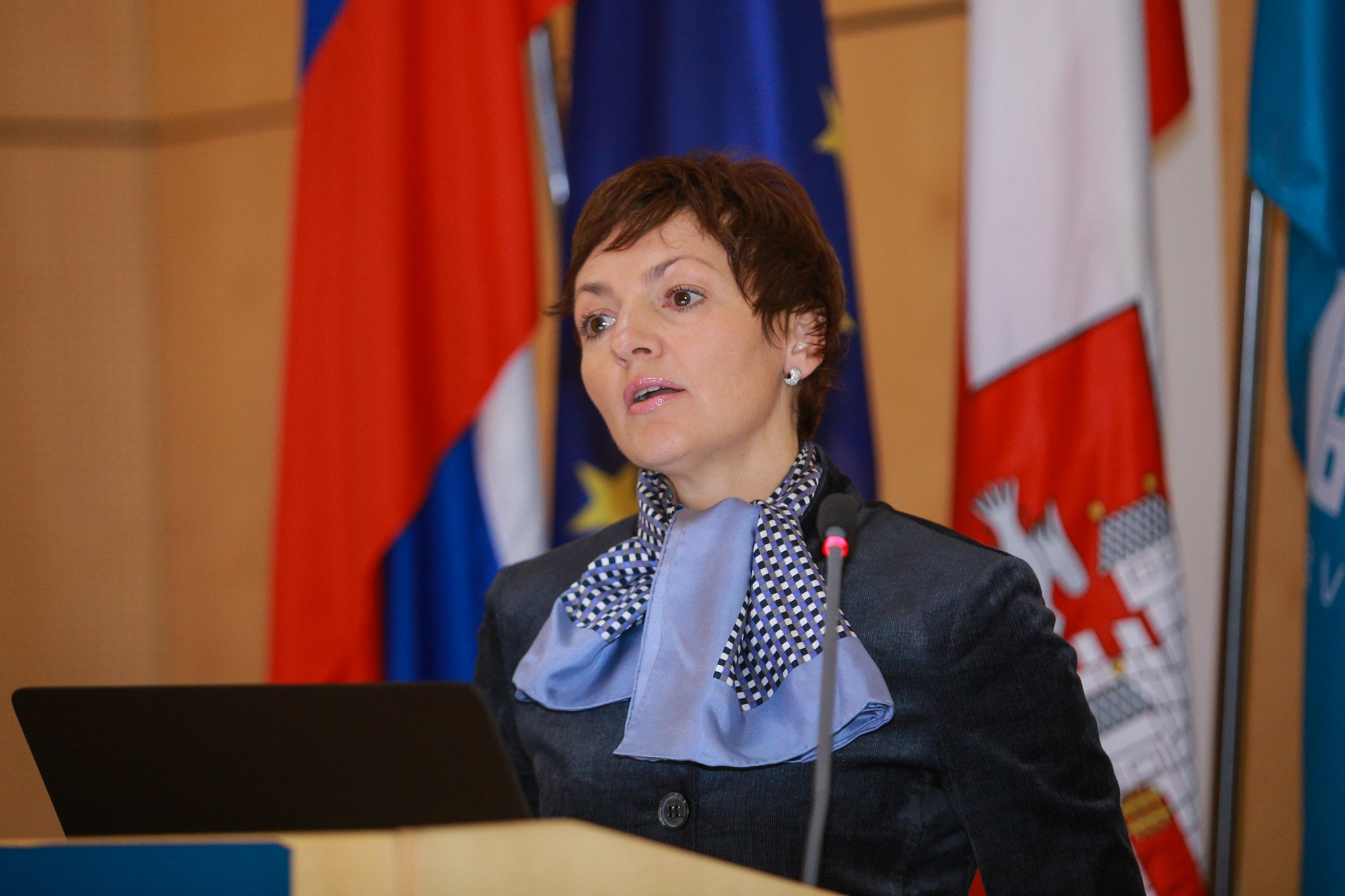 DRC_Maribor_2015_Minister Education Slovenia
